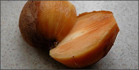 Chicozapote Frutasnuevas